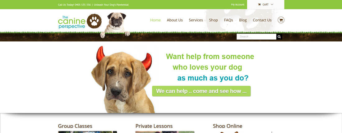 Laughing Buddha Web Design Portfolio - The Canine Perspective Ballina